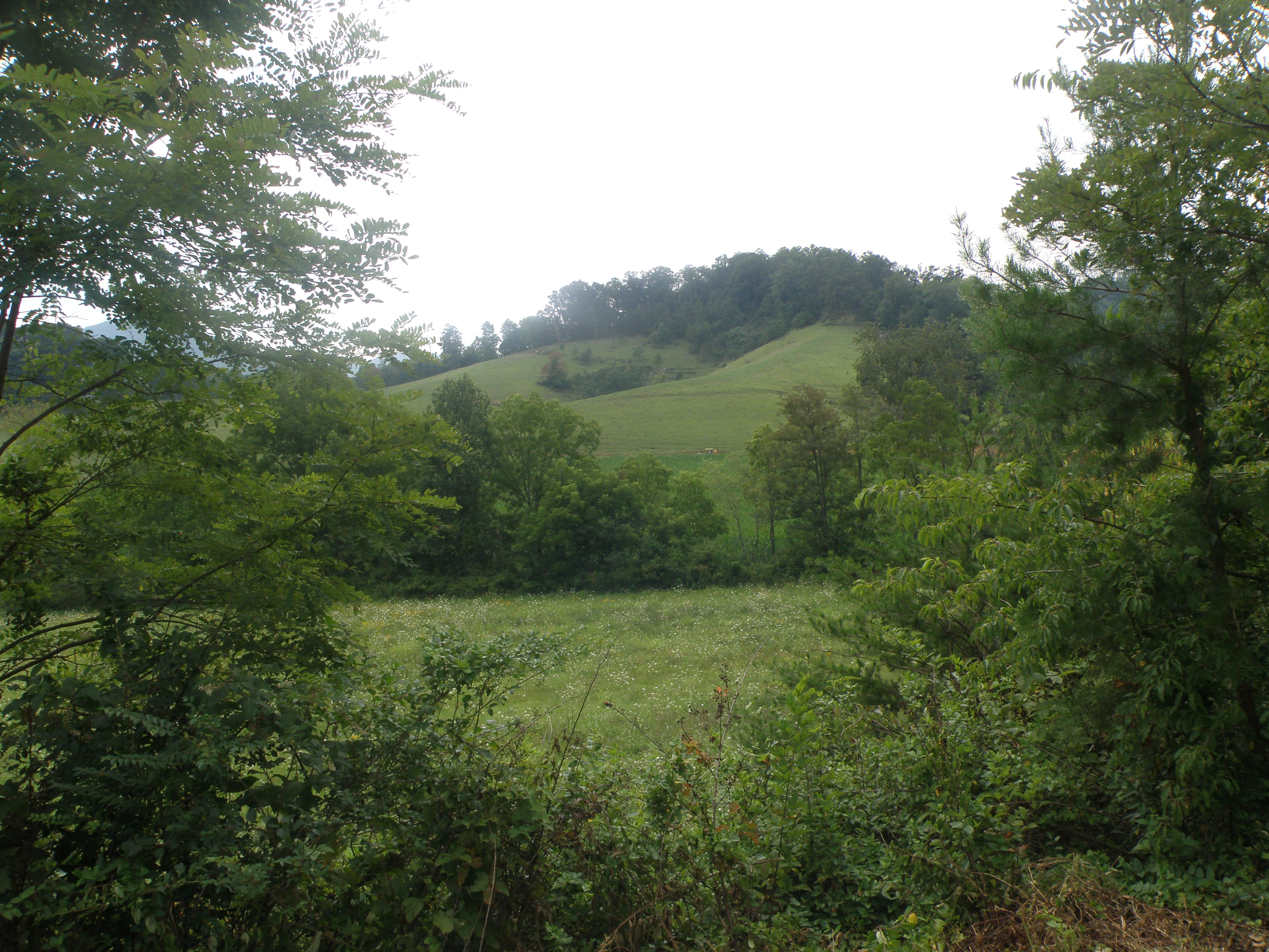 Oak Grove Plantation Lots