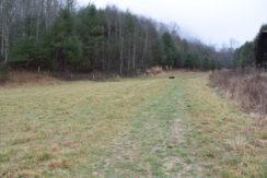 Lotties Creek Rd, Burnsville, NC 28714